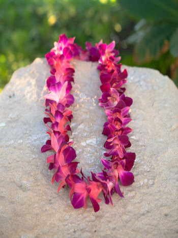 DYED PINK ON PURPLE ORCHID LEI (SINGLE)