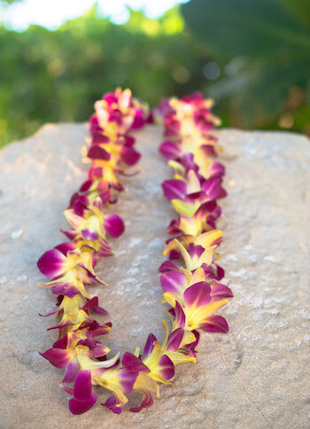 DYED YELLOW ON PURPLE ORCHID LEI (SINGLE)