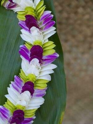 TRI COLOR INDIANA LEI (WHITE + PURPLE + GREEN)