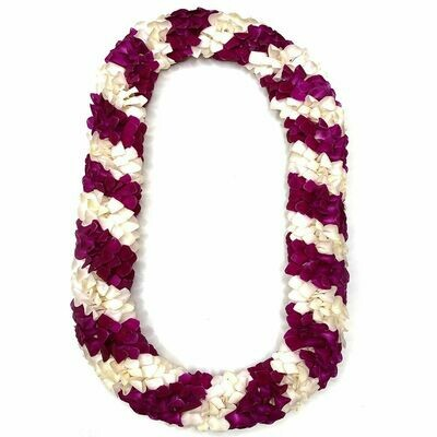 SPIRAL LEIS (3 COLOR OPTIONS)