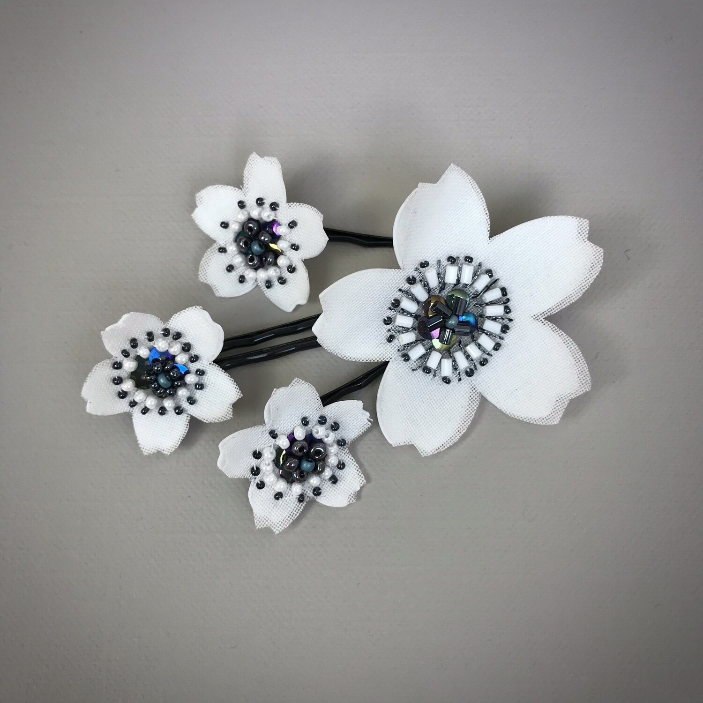 Fleurs Islande