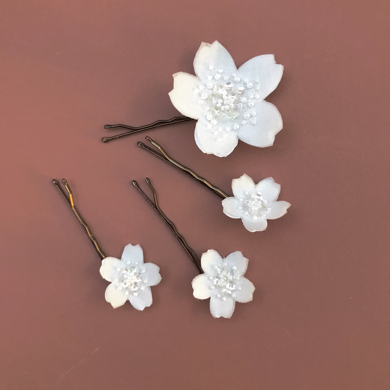 Sakura Alba