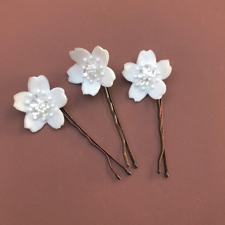 Mini Sakura Alba (trio)