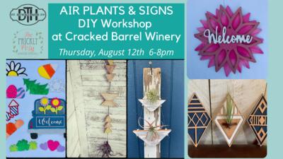 Air Plants & Signs at CBW