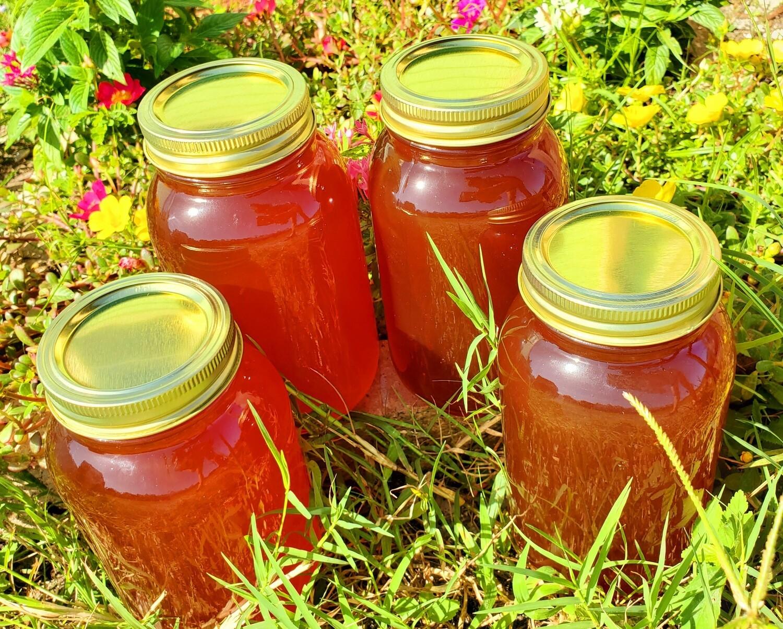 Full Gallon- Saw Palmetto Honey