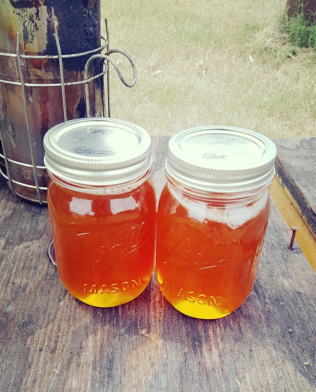 Pint Jar- Saw Palmetto Honey