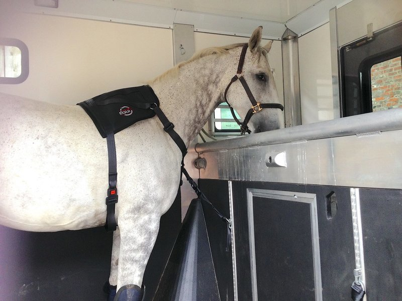 SPECIAL OFFER! Equi Travel Safe and Track, Ring and Fitting Kit
