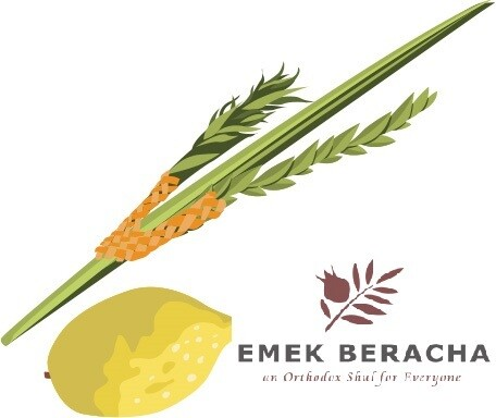 Standard Lulav & Etrog for Congregation Emek Beracha