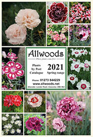 2021 Spring Mail Order Catalogue