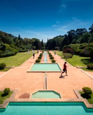 Serralves Foundation - Visit Museum - Adult Ticket