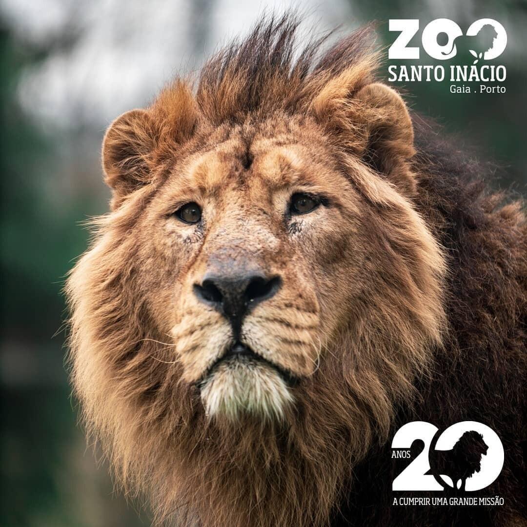 Zoo Santo Inácio - Visit Zoo (Family Price 2+2)