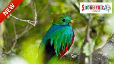 Costa Rica in Eco-Lodges (vluchten niet inbegrepen !)