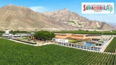 Hotel Viñas Queirolo (Ica - Peru)
