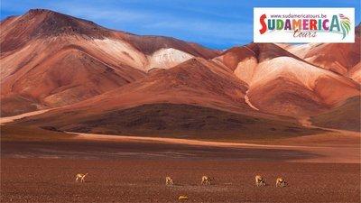 Chili / Bolivia, van de Atacamawoestijn tot de Gran Salar van Uyuni
