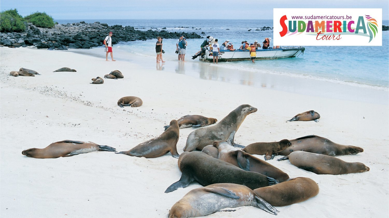 Galapagos, Island Hopping