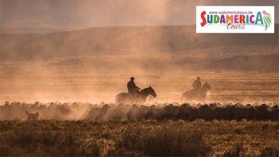 Argentinië, van de Andes tot het Land van de Gaucho's