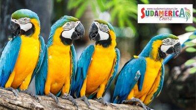 Costa Rica 4Kids