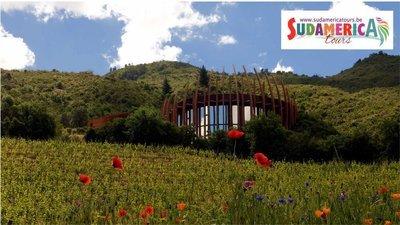 Clos Apalta Residence, Relais & Chateaux (Santa Cruz - Chile)