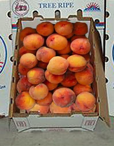 Fresh Georgia Peaches
