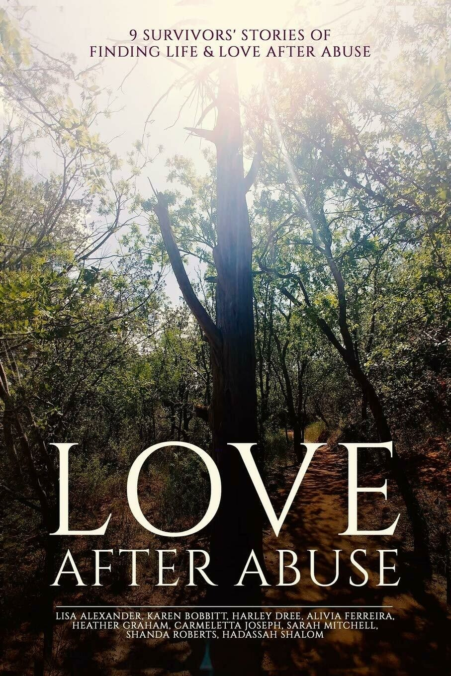Love After Abuse Book
