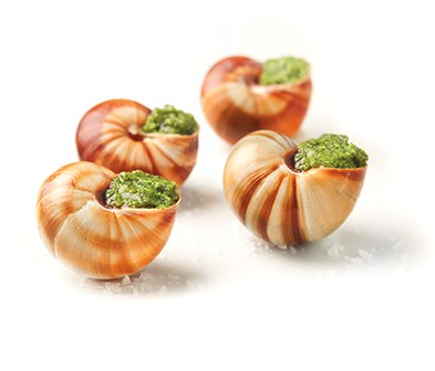 12 Escargots de Bourgogne ( Imported Burgundy Snails) In shell with garlic butter