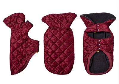 Burgundy Coat - Standard Dachshund