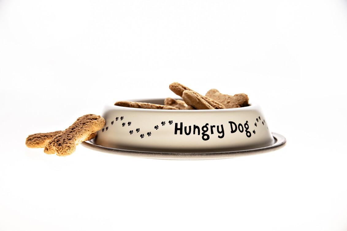 Small Dog Food Bowl