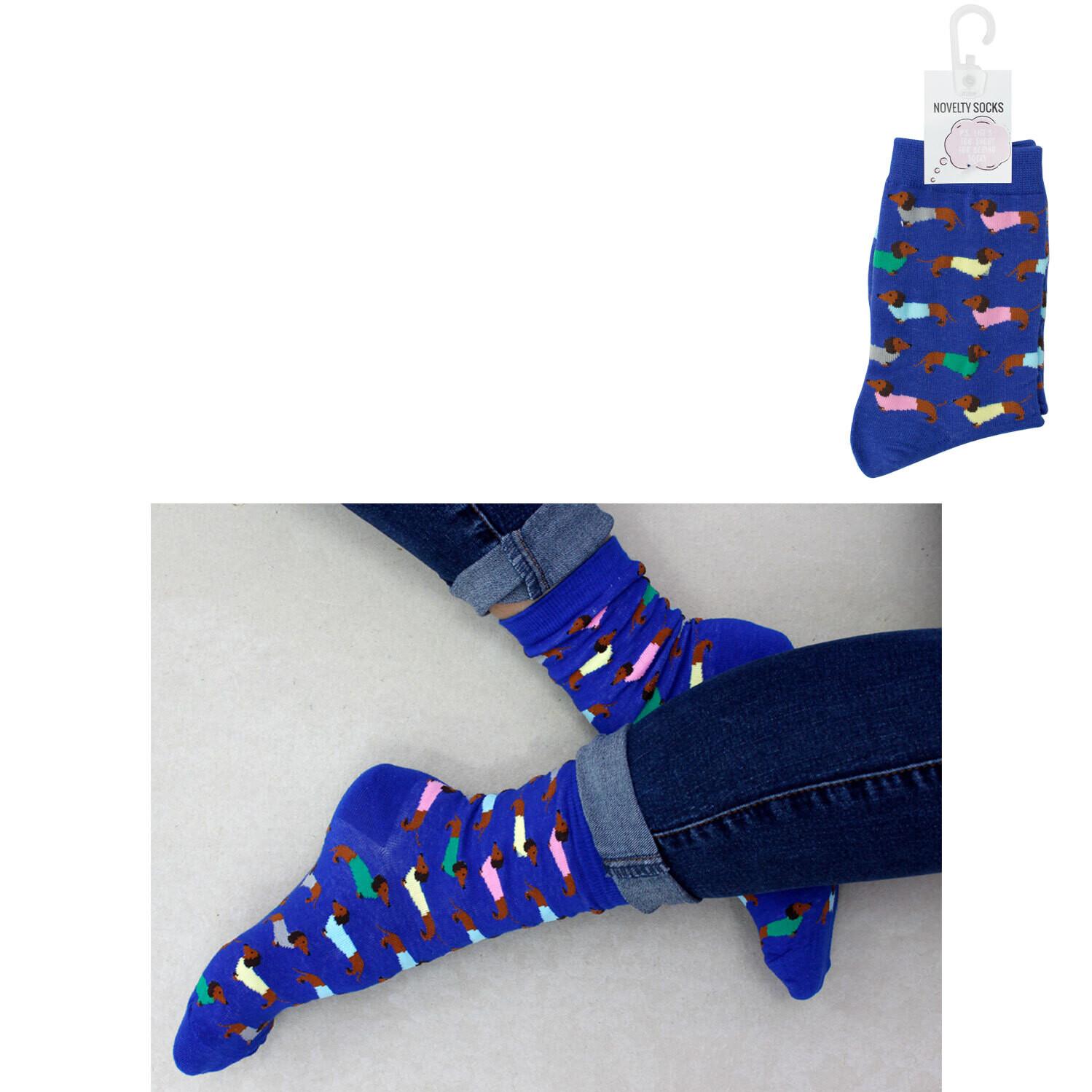 Colourful Dachshund socks