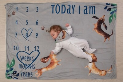 Milestone Blanket - Boys