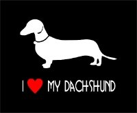 Car Sticker - Short Haired Dachshund
