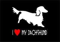 Car Sticker - Long Haired Dachshund