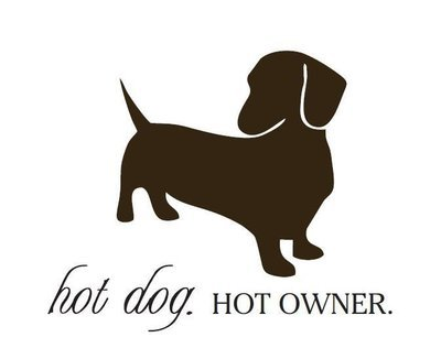 Car Sticker - Hot Dog Hot Owner