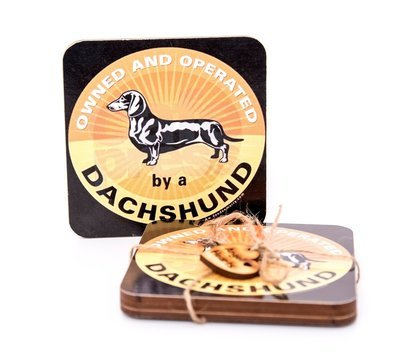 ​Set of Dachshund Coasters Design 2 - Owned and Operated