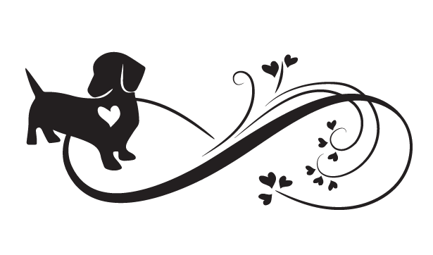 Infinity Dachshund Short Haired  - Car sticker