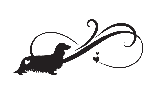​Infinity Dachshund Long Haired - Car Sticker
