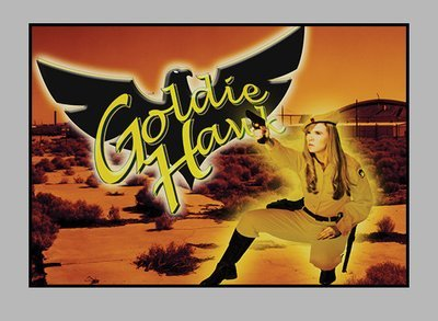 "Eagle Force Trading Cards - ""Goldie Hawk and The Cat"" photo cards"