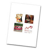 Metalog® training tools - Katalog på engelsk