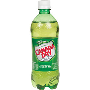 Canada Dry Ginger Ale 20 oz - Case of 24