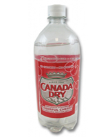 Canada Dry Pomegranate Seltzer 20 oz - Case of 24