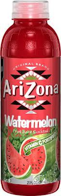 Arizona 20 oz Plastic Bottles Watermelon - Case of 24
