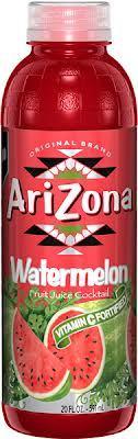 Arizona 20 oz Plastic Bottles Watermelon - Case of 24