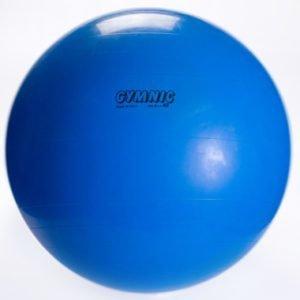 Gymnic Ball 65cm