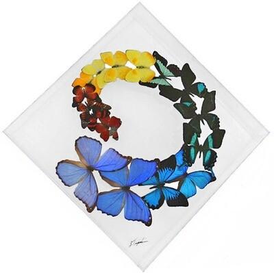 "22 - 15"" X 15"" Diamond Butterfly Display Swirl"