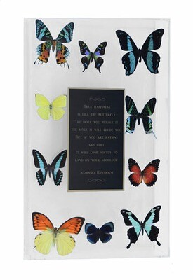 """15 - 10"""" X 17"""" Plaque Butterfly Display"""