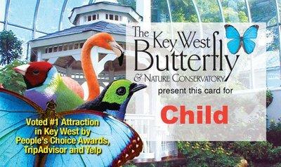 Admission - Child (4-12yrs)