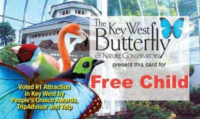 Admission - Free Child (3yrs & under)