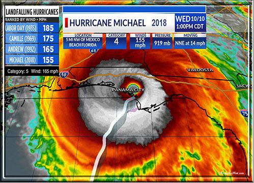 "Michael 8"" x 11"" 10674"