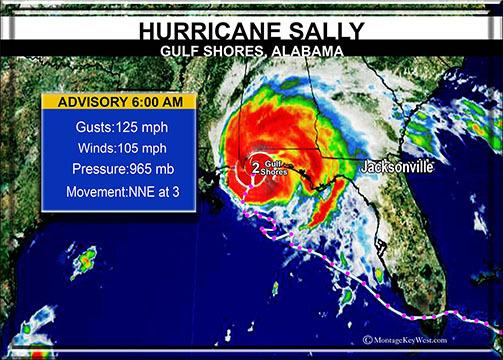 "Sally path 8"" x 11"" 10675"