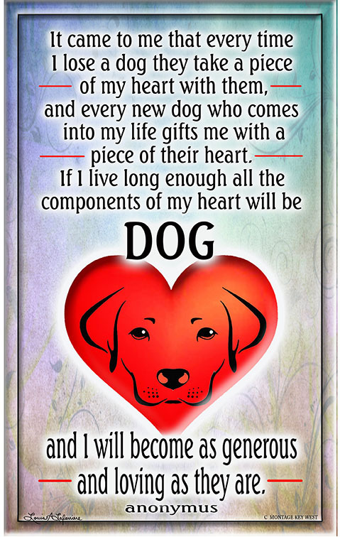 A Dogs Heart 7 x 11 10679