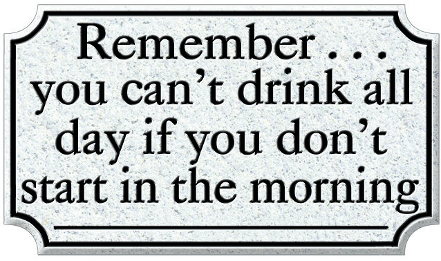 REMEMBER DRINK ALL DAY * 6'' x 11'' 10068